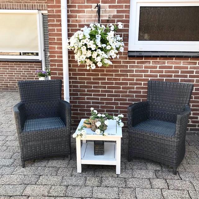 Rotan tuinstoelen witte petunia