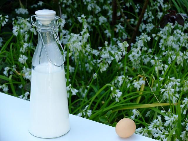 Pot au lait / Fuji X30