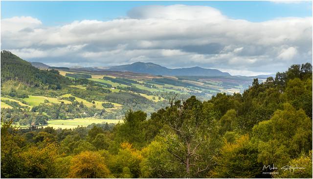 Birks Viewpoint