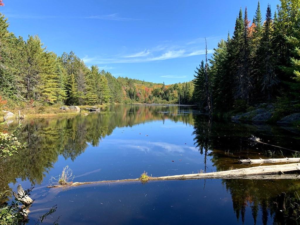 Lake fall colours