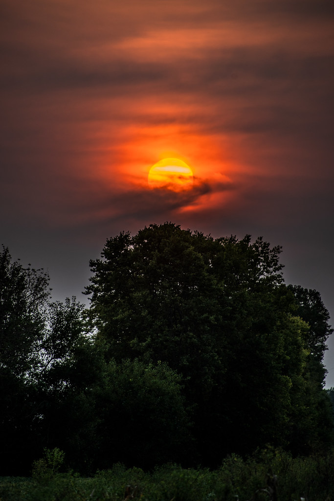 A big orange ball in dark clouds, over green trees.