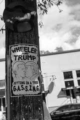 Wheeler & Trump