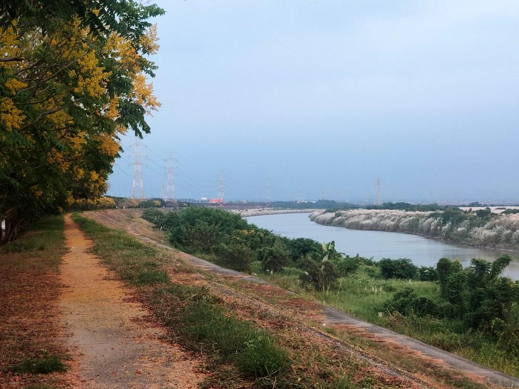 麻豆曾文溪畔 (14)