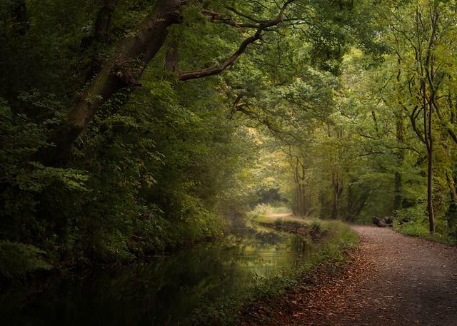 Clydach Canal, Wales