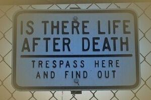 Survival after Death