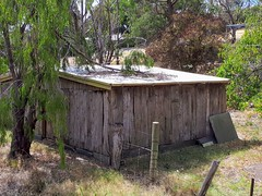 Wooden slab shed, St Georges St Willunga