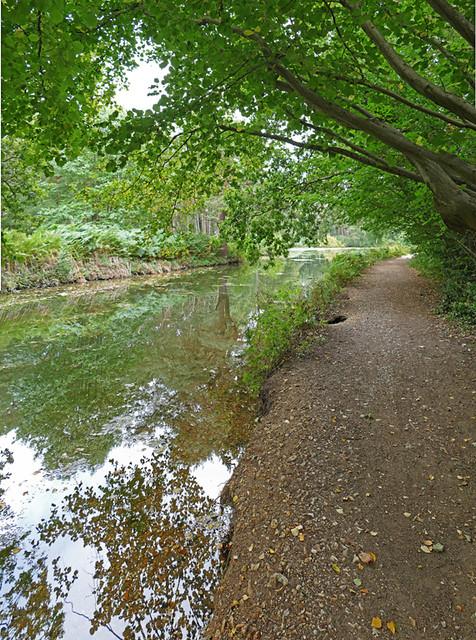 D24093-5,p.  Basingstoke Canal.