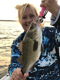 Photo of woman holding a white perch