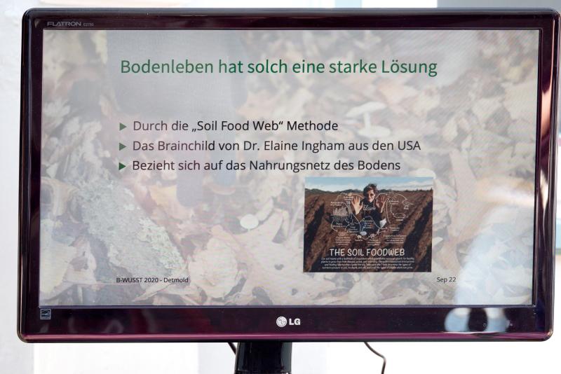 WEB_B-WUSST Bodenleben_22.09.20_©Foto Birgit Sanders__291
