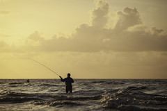 Flyfishing In the Moning Surf