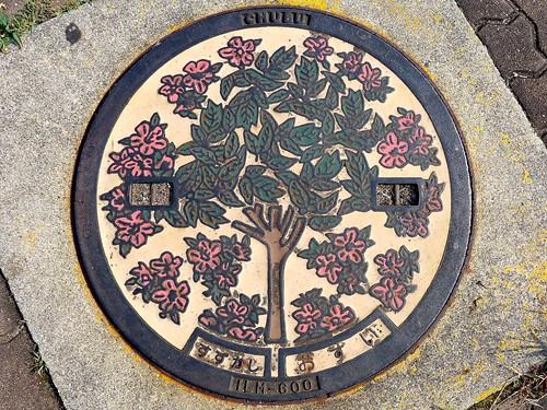 Suzuka Mie, manhole cover 2(三重県鈴鹿市のマンホール2)