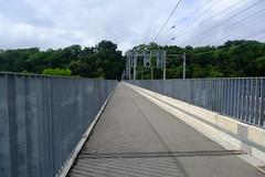 Pont de la Jonction @ Geneva