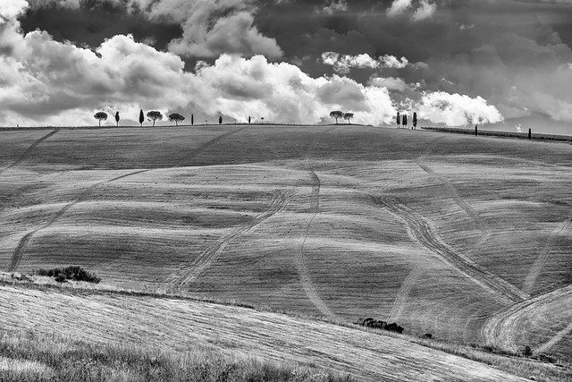 Vald'orcia--3