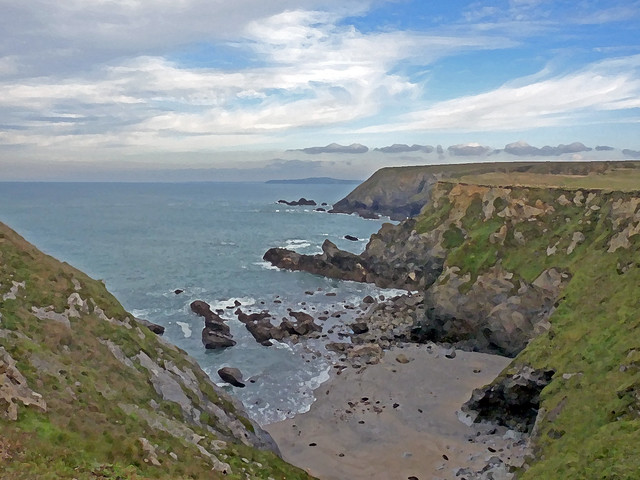 Mutton Cove & Along the North Coast Dry Brush
