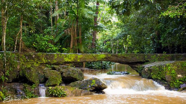 Ponte de pedras, formação natural!