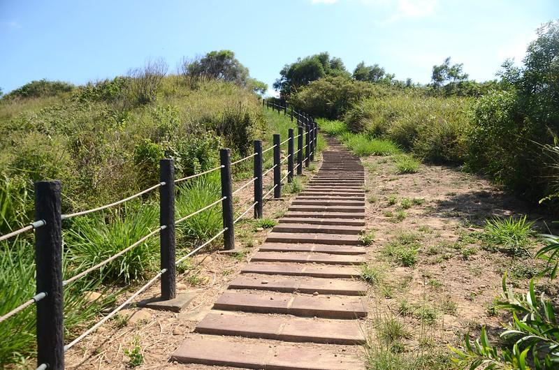 嶺頂步道 (2)