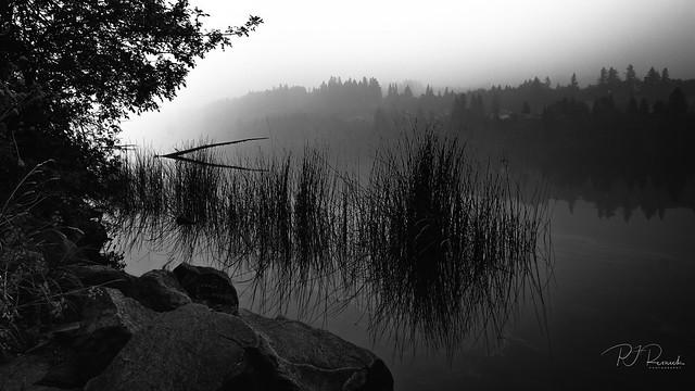 Lacamas Lake V
