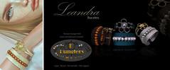 KUNGLERS - Leandra Vendor 2