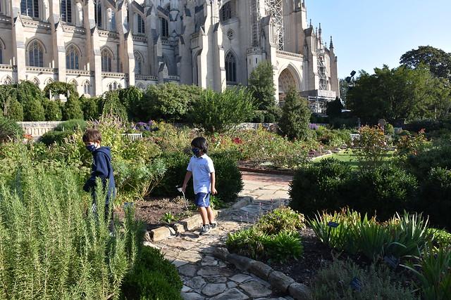 Exploring the Garden of Eden