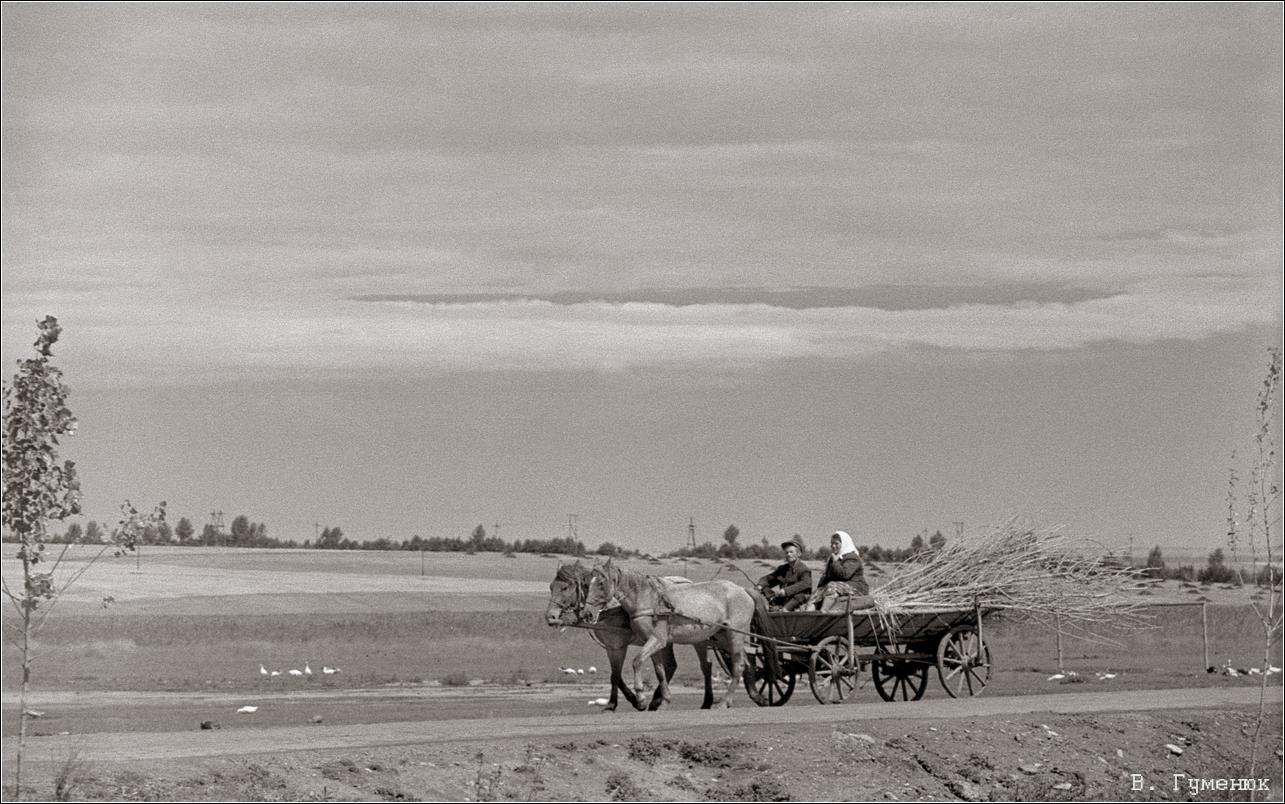 1967. Деражня. Сельские будни