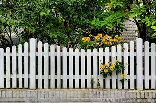 ein Gartenzaun bei mir im Dorf