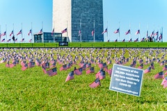 2020.09.23 Covid Memorial Project, Washington, DC USA 267 17021