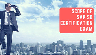Scope of SAP SD Certification Exam