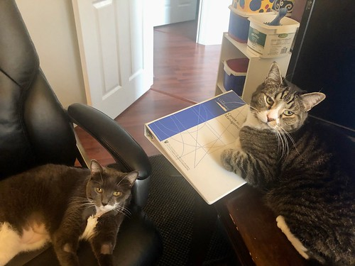 Crick and Watson are helping me work from home