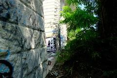 Pont de la Jonction @ Sentier des Falaises @ Geneva