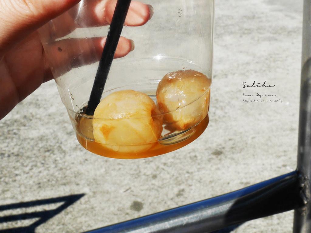 新北石碇ig打卡拍照景點一日遊推薦八卦茶園千島湖景觀餐廳約會聚餐 (3)