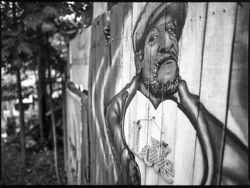 fence painting, portrait, Fred Sanford, Burton Street Peace Garden, Asheville, NC, Mamiya 645 Pro, mamiya sekor 45mm f-2.8, Fomapan 200, HC-110 developer, 9.19.20