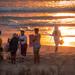 Durban Spring Walks 2020-32