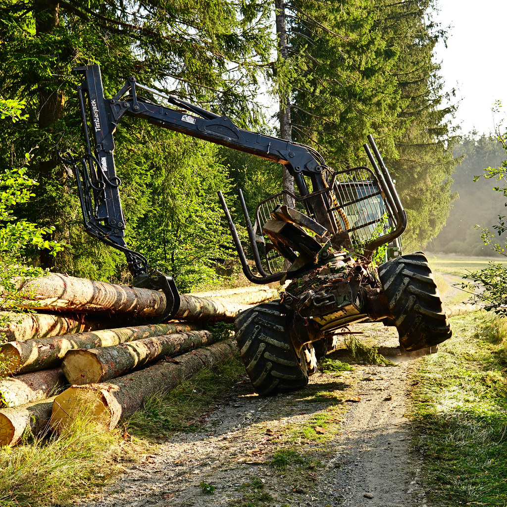 Wood harvester in action