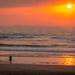 Durban Spring Walks 2020-10
