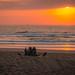 Durban Spring Walks 2020-14