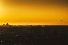 Hot air balloons | Vilnius #266/365