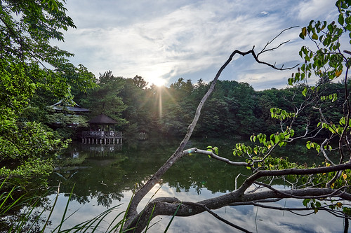 lake water sun sunset shrine sky clouds nature landscape 池 水面 日 日暮れ 神社 空 雲 自然 風景 shakujiipark tokyo japan 石神井公園 東京