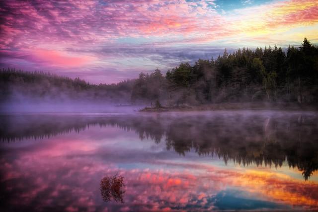 Ein magischer Morgen am Nedre Blomsjön