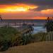 Durban Spring Walks 2020-25