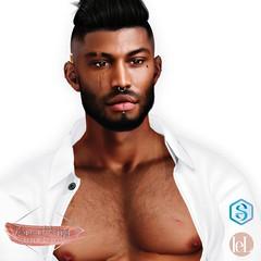 NEW Diamond Beauty Shape Orlando