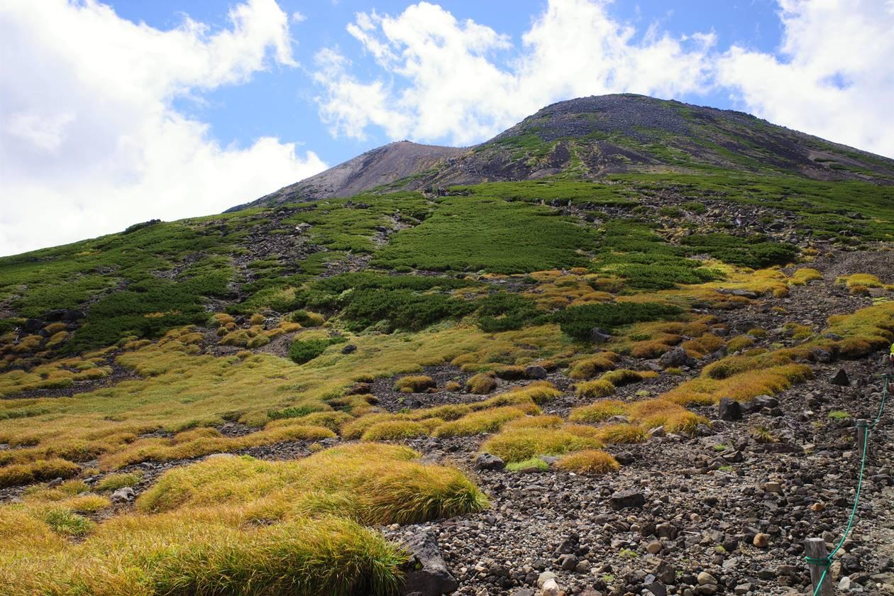 乗鞍岳の草紅葉