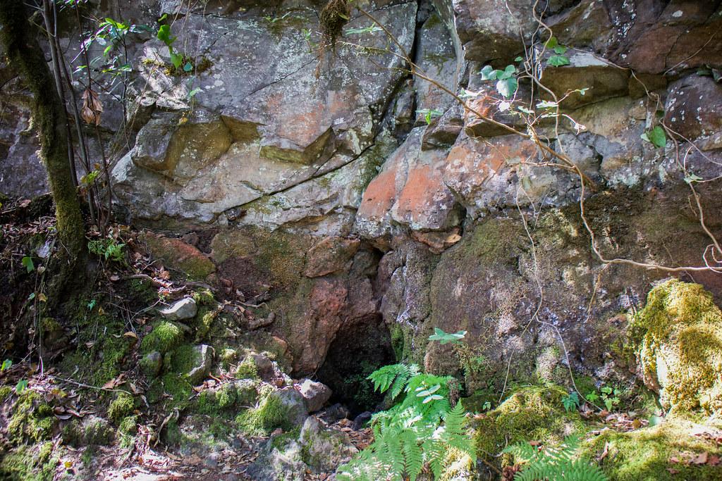 Fuente Risquillos de Corgo en Garajonay