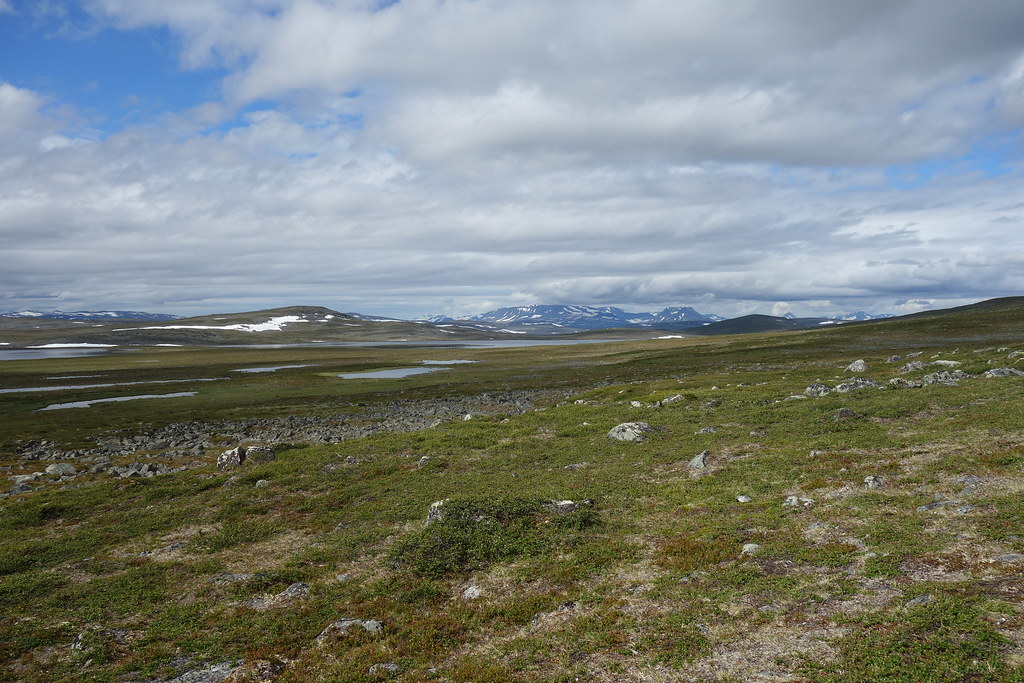 Huge distances and wide views. The massif in the distance is Juoksavátnjunni and Pältsan. More than 30 km away as the bird can fly.