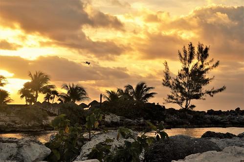 Puerto Aventuras. Sunrise, Nikon D3100. DSC_0335.