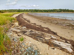 McNabs Island Provincial Park