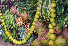 fruit garlands of oranges, bananas, pineapples, melons and coconuts for a festival at Chiapa de Corzo in Mexico