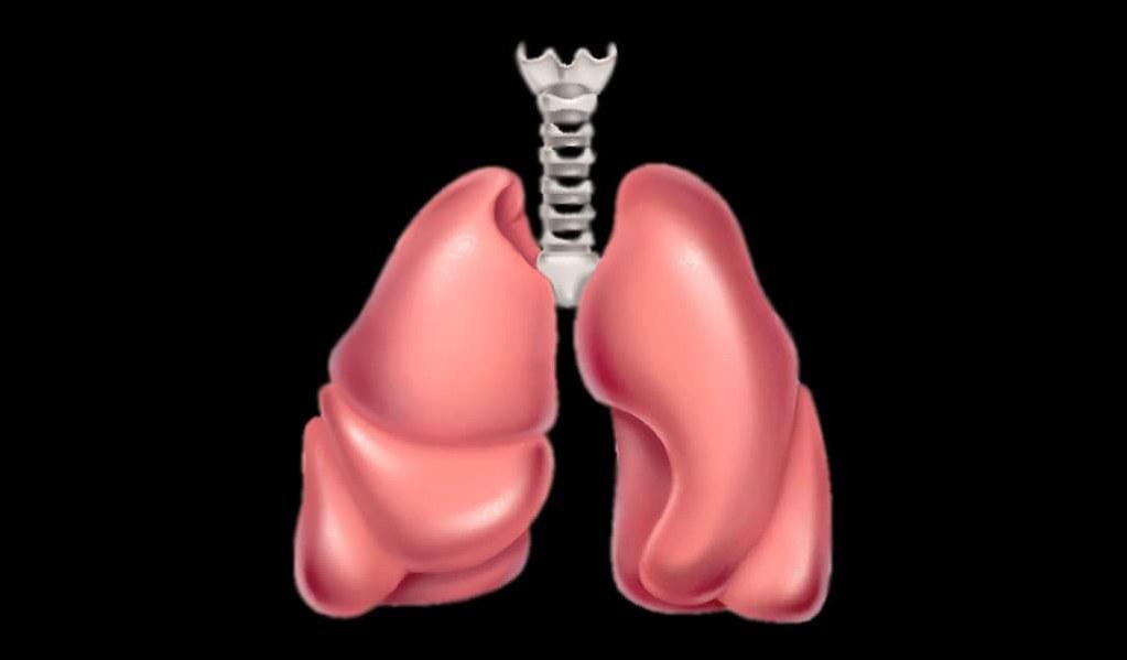 comprendre-les-maladies-pulmonaires