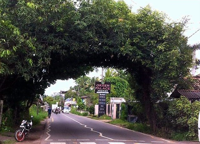 Beautiful Place in Veyangoda / Nittambuwa Rd.