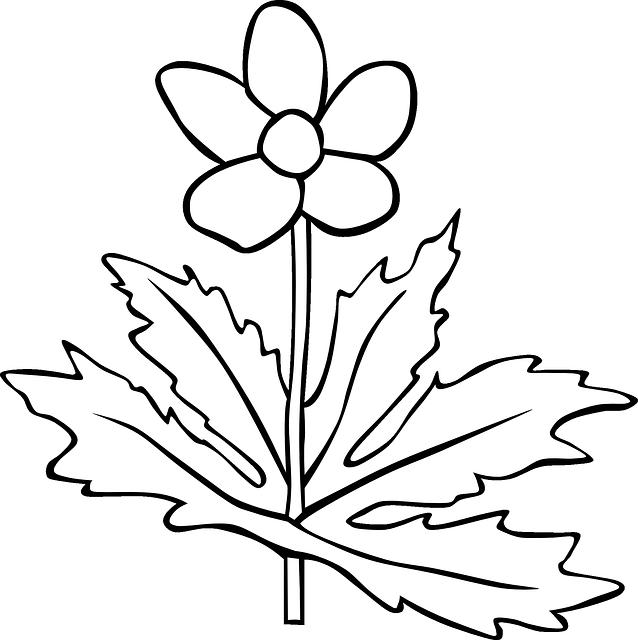 gambar flora cocok untuk sd