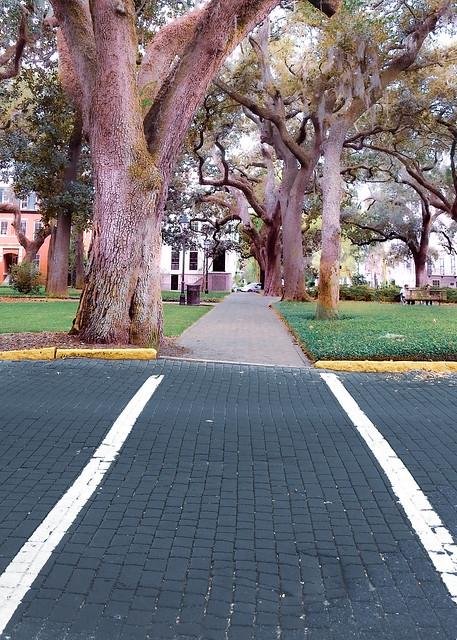 Savannah Georgia / crosswalk / park